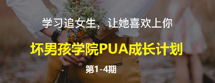 《坏男孩学院PUA成长计划》(共4期-46节课)[已完结]